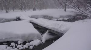 20130427山の川上川橋