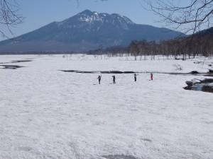 20150505~06尾瀬ヶ原ネイチャースキーハイキングDSCF0512