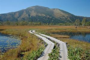 尾瀬ヶ原から見た至仏山
