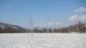 20140426~27尾瀬ヶ原ネイチャースキーハイキング1IMG_0267