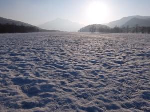 20150425~26尾瀬ヶ原ネイチャースキーハイキングDSCF0093